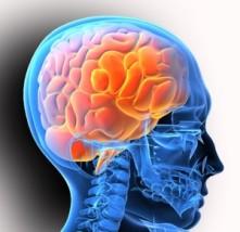 Що лікує невролог