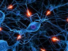 Які захворювання лікує невролог